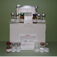 Interleukin-1-Beta-ELISA-Kit-IL-1Beta-Rabbit-KAMIYA-BIOMEDICAL-COMPANY-KT-56430