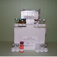 Interleukin-8-ELISA-Kit-IL-8-Rabbit-KAMIYA-BIOMEDICAL-COMPANY-KT-56453