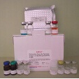 Soluble-Fms-Like-Tyrosine-1-Svegfr1-ELISA-Kit-SFLT1-Rat-KAMIYA-BIOMEDICAL-COMPANY-KT-60699