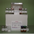 Aquaporin-2-ELISA-Kit-AQP2-Mouse-KAMIYA-BIOMEDICAL-COMPANY-KT-57423