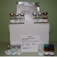 Insulin-Like-Protein-5-ELISA-Kit-INSL5-Mouse-KAMIYA-BIOMEDICAL-COMPANY-KT-58379