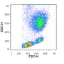 RBC-Lysis-Buffer-10X-Tonbo-Biosciences-TNB-4300-L100