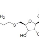 Bio-6C-SAM-1b-Arthus-Biosystems-ACT00203-100