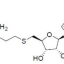 Aza-SAM-Arthus-Biosystems-AST00201
