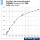 Recombinant-Rat-NGAL-BioPorto-Diagnostics-A-S-SP003RA