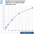 Recombinant-Pig-NGAL-BioPorto-Diagnostics-A-S-SP005RA