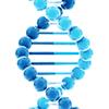 CYBRFast-qPCR-Lo-ROX-Master-Mix-Tonbo-Biosciences-31-5101-0100R