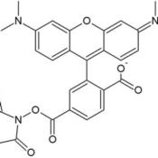 HOOK-Dye-Labeling-Kit-5-6-TAMRA-SE-Rhodamine-