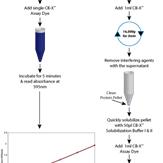 CB-X-Protein-Assay