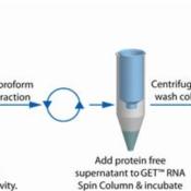 RNA-Isolation-Scheme