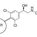 Clenbuterol-BSA-ImmuneChem-Pharmaceuticals-ICP1271