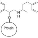 Ractopamine-BSA-ImmuneChem-Pharmaceuticals-ICP1251