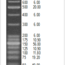 25-100-bp-Mixed-DNA-Ladder-25-100-bp-mixed-DNA-Ladder-25-2-000-bp-1-250-µl-150-ng-µl-Bioneer-D-1021