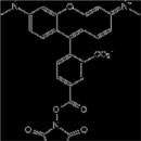 5-TAMRA-SE-Tocris-Bioscience-5441-10MG