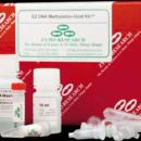 EZ-DNA-Methylation-Gold-Kit-Zymo-Research-D5005
