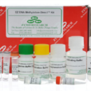 EZ-DNA-Methlyation-Direct-Kit-Zymo-Research-D5021