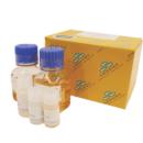 Mix-Go-E-coli-Transformation-Kit-Zymo-Research-T3001
