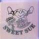 Sweet-Sue-for-animal-facilities-10-pk-Diversified-Biotech-SUE-400