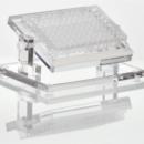 Adjustable-Well-Plate-Stand-Diversified-Biotech-WPAJ-1000