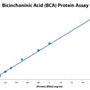BCA-Protein-assay
