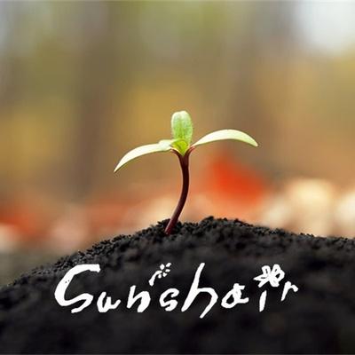SUNSHAIR