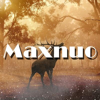 maxnuo international co.ltd