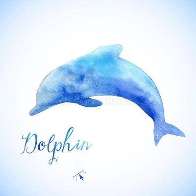 dolphin0