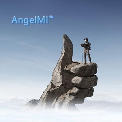AngelMI
