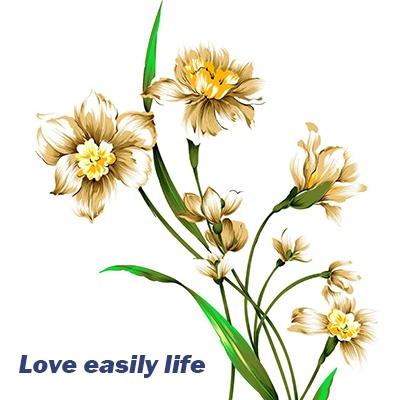 Loveeasilylife