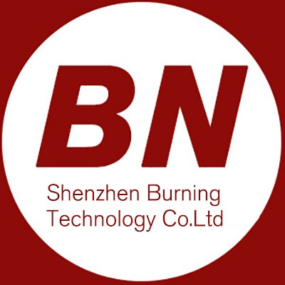 Burn Science and Technology Ltd