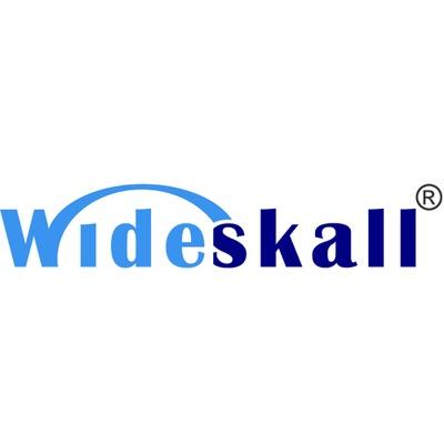 Wideskall Online
