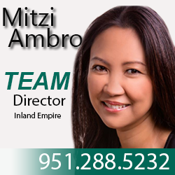 Mitzi Ambrosio, Director profile photo
