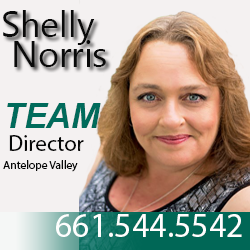 Shelly Norris Director profile photo