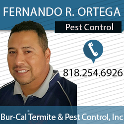 Fernando R. Ortega profile photo