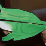 Frog clothespin animal for finger strength
