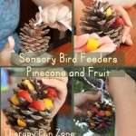 Sensory Bird Feeders