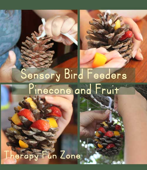 sensory-bird-feeders-fruit