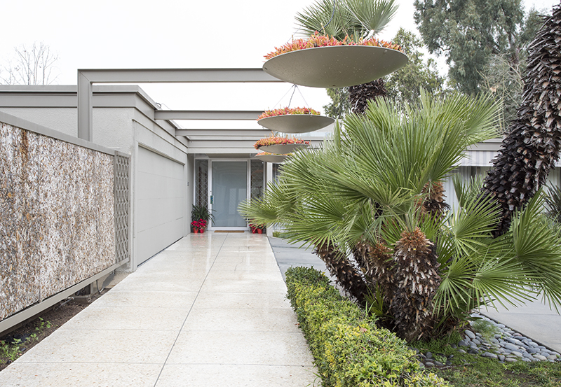 Mid- Century Modern W/ Pool (Most Utilities Included)