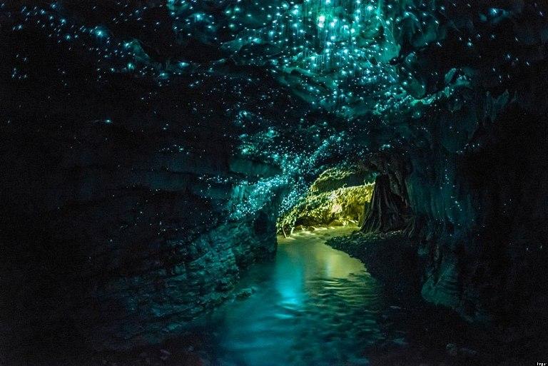14-cuevas-de-waitomo-glowworm