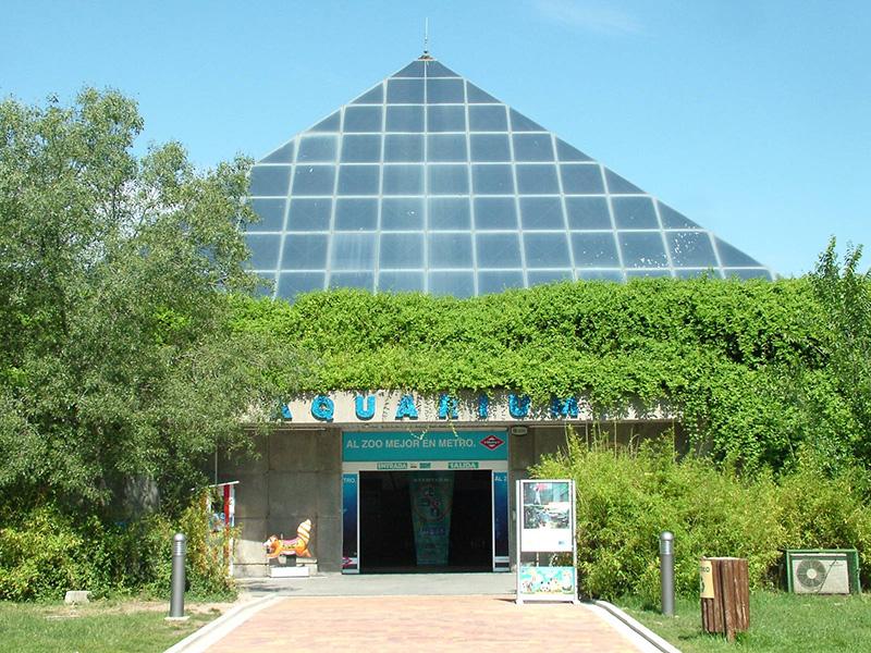 aquarium-madrid
