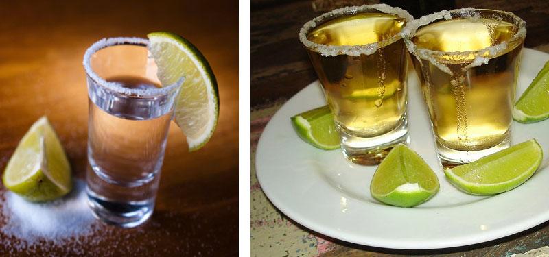ruta-del-tequila-2