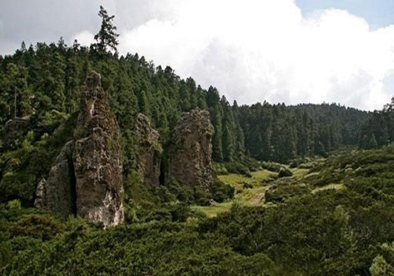 2. Reserva de Biósfera de la Barranca de Metztitlán