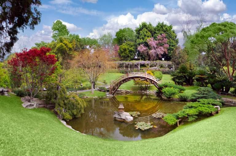 25. Arboretum y Jardín Botánico de Los Ángeles