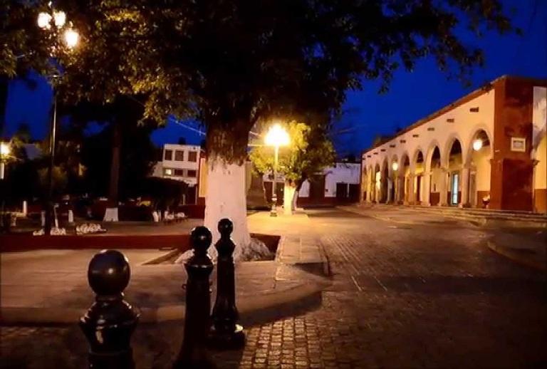 49. Pino, Zacatecas