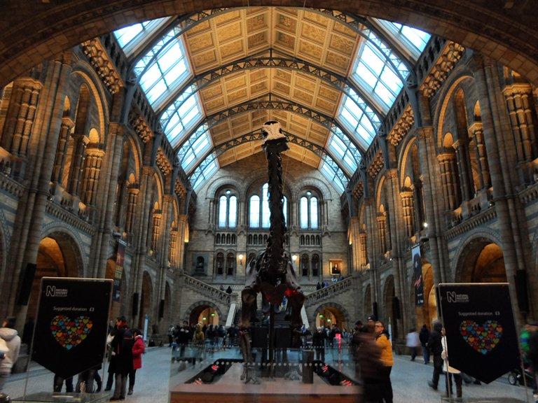 10. Museo de Historia Natural