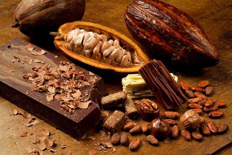 12. Vive una experiencia nueva con el cacao