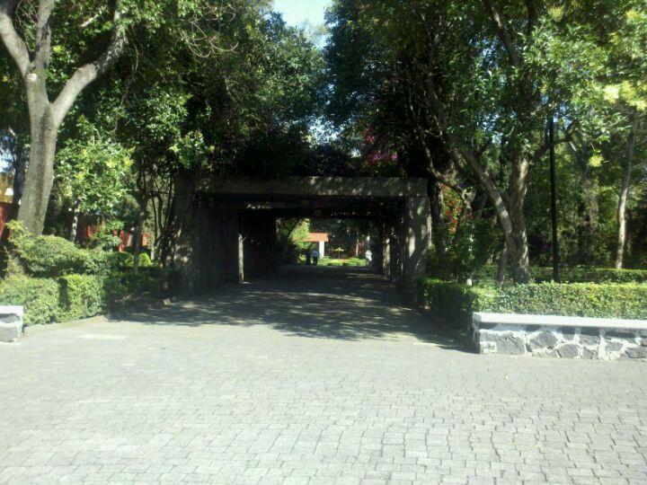 15. Parque Frida Kahlo