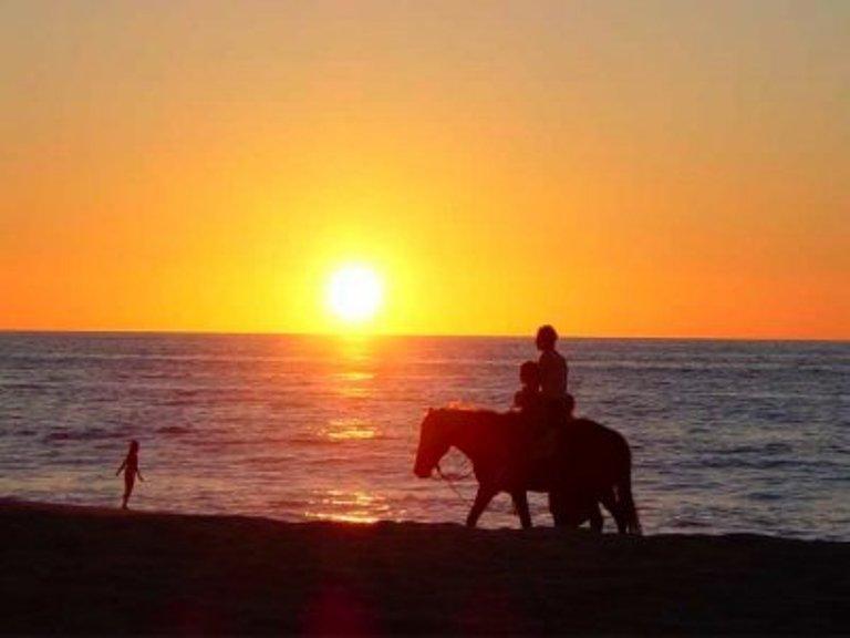 6. Camina, nada y pasea a caballo