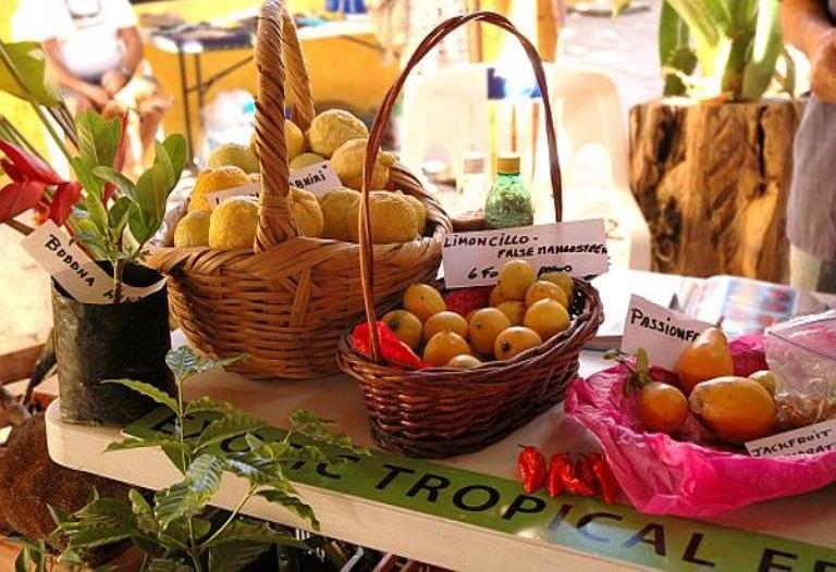7. ¿Dónde puedo comprar productos vegetales frescos