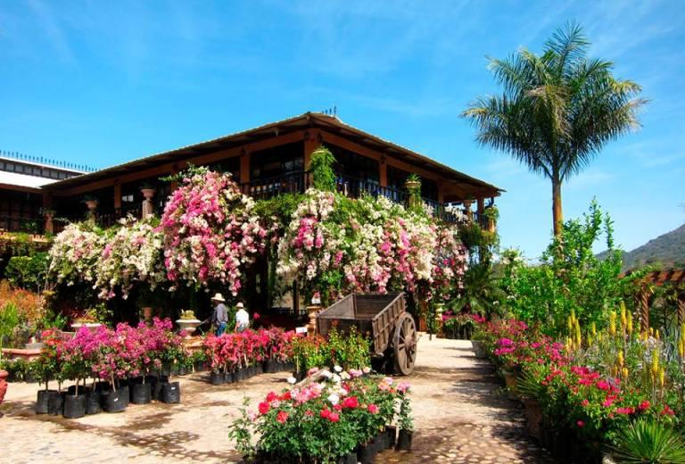 7. Jardines Botánicos